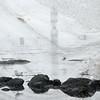 Temps d'arrêt (andrefromont) Tags: andréfromont andrefromontfernandomort fernandomort bretagne phare lighthouse mouette