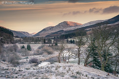 A Cold Sunrise (.Brian Kerr Photography.) Tags: scotland scottishlandscapes mountains moffat moffathills moffatvalley photography outdoor outdoorphotography opoty nature naturallandscape natural landscapephotography briankerrphotography briankerrphoto sony formatthitech a7rii sunrise coldmorning winter frost frozen trees weather scotspirit visitscotland visitbritain light availablelight mountain tree sky landscape snow field grass