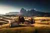 vast meadows (Dennis_F) Tags: alpe di suisi seiser alm outdoor mountain range italy italia italien morgen light shadow dawn