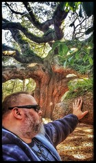 10/26/17 - Angel Oak, Johns Island, SC (CubMelodic23) Tags: october 2017 vacation trip hdr tree liveoaks nature spiritual johnsisland southcarolina angeloak me dave selfportrait