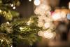 Light Bells - Photo # 27 of a Christmas Series (*Capture the Moment*) Tags: 2017 bokeh christmas christmasmarket fotowalk mog mogprimoplan1958neo meyeroptikgörlitzprimoplan1958neo munich münchen nachtaufnahmen nightshot primoplan sonya6300 sonyilce6300 weihnachtsmarkt bokehlicious