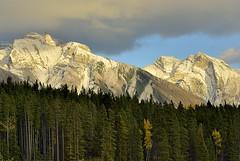 Canada, in Earth as in Heaven (Vittorio Ricci (thanks +++ 3.3 millions views)) Tags: canada alberta canadianrockies