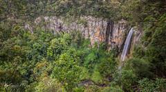 Purling Brook Falls (R. Francis) Tags: purlingbrookfalls waterfall springbrooknationalpark springbrook ryanfrancis ryanfrancisphotography qld queensland southeastqueensland