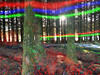 LeftShift_0009 (troutcolor) Tags: convert imagemagick evaluatesequence