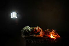 The Space Between Electricity and Fire (Studio d'Xavier) Tags: werehere ghettolighting stilllife pumpkin mold decay