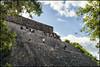 _SG_2017_11_0656_IMG_3547 (_SG_) Tags: mexiko mexico urlaub holiday roundtrip rundfahrt méxico méjico vereinigte mexikanische staaten spain spanish flag united mexican states estados unidos mexicanos palenque maya city chiapas uxmal ancient pyramid magician unesco world heritage site merida yucatan prehispanic town