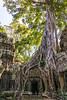 Kambodscha-198 (Stani Stan) Tags: asien gebeco kambodscha reise urlaub krongsiemreap siemreapprovince kh