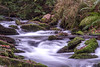 Babling Brook (Kev Gregory (General)) Tags: river trevillet st saint nectan nectans glen cornwall england stone slow motion filter long exposure filters neutral density blur canon 7d kev gregory water fast flow flowing rock tree moss leaves wood woods forest green run