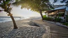 The Boardwalk Barbados (hitennaik) Tags: barbados boardwalk palm trees sea ocean sunset sand beach building