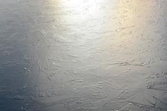 1PRO_7225 (Radu Pavel) Tags: radu pavel radupavel cosmos ©radupavelallerechtevorbehalten ©radupaveltodoslosderechosreservados ©radupavelallrightsreserved fotononstop 氷 光 light ice licht eis luz hielo winter invierno 2017 lake see lago 湖 冬