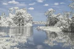 The Winterscape Reflection (Thomas Vasas Photography) Tags: landscape nature winterscapes snowscapes winter seasons water lakes reflecions clouds snow lake eufaula alabama