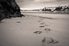 03.01.2018 Spuren im Sand (AMUMOT) Tags: sand riomira milfontes portugal spuren
