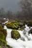 Lille Foss (mark.helfthewes) Tags: norwegen kommune bjekreim rogaland felse moose lb filter nikon d3s herbst landschaft
