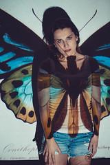 Carolin - Beamer Experiment 8 (AH-Phototiv) Tags: beamer projektor projector butterfly schmertterling colour color farben light licht geometrie geometry rectangle dreieck viereck quadrat stripes red blue bee biene model woman girl frau experiment