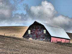 (58 Twin) Tags: washington palouse field red barn