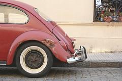 Fusca (Mauriciooo!) Tags: auto car vehiculo volkswagen fusca beetle colonia uruguay nikond7100 d7100 nikon street calle parked old vintage viejo estacionado rueda wheel carspotting automotivoephotography