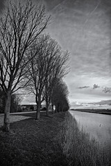 There's Something About Trees And Wind (Alfred Grupstra) Tags: blackandwhite nature tree outdoors landscape scenics nopeople water winter monochrome sky england lake cloudsky tranquilscene overcast river grass dark ruralscene
