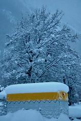 True colour (ColmDub) Tags: grimentz snow alps valais switzerland snowfall mountains alpine plough dog man