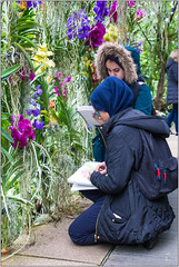 Outside The Classroom (Mabacam) Tags: 2018 richmonduponthames kew kewgardens flowers nature orchids drawing students artwork