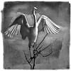 Building Matyerials ~ Great Egret (Johnrw1491) Tags: essay egrets wading waders water marsh marshland summer lake ponds tree monochrome art