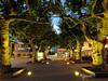 place de la Mairie... (Phrygane57) Tags: vieuxboucau vacances placedelamairie arbres platanes heurebleue
