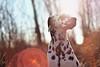 'You can be King. Again.' (JerneiV.) Tags: king boy mydog mydalmatian serious sunset beauty dog dalmatian dramatical