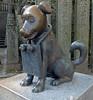 "Kotohira-029 (photozaki) Tags: ""dogs cats"" dog dogs inu cat cats neko shikoku japan ohenro88 ohenro pilgrimage"