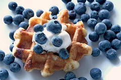 I only put it together (flowrwolf) Tags: smileonsaturday madebyme 118picturesin2018 118in2018 22imadethisfor118in2018 white blue waffle belgianwaffle icecream blueberries blueberry waffleicecreamandblueberries whitebackground food dessert macro macrophotography macrophotograph makro macrolens macrophoto fujifilmxt20 xf60mmf24rmacro bright vivid creativetabletopphotography flowrwolf