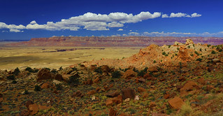 The beginning of Grand Canyon : Summer afternoon . . .