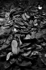 Shoes (Salvo.do) Tags: museum memorial auschwitz poland olocaust black white monochrome remember k5 pentax shoes