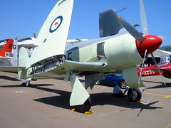 "Hawker Sea Fury FB.11 5 • <a style=""font-size:0.8em;"" href=""http://www.flickr.com/photos/81723459@N04/26510584898/"" target=""_blank"">View on Flickr</a>"