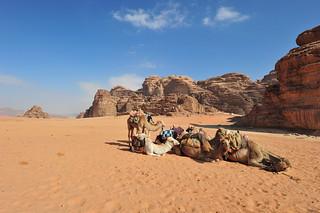 Wadi Rum Desert, Jordan 2 (182)