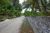 "Main Street (Peter_069) Tags: malediven maldives atoll ""addu meedhoo maradhoo paradis paradise ocean sea water wasser ozean palmen"