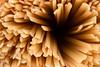 Classic style-2 (Daniel Kulinski) Tags: 60mm bavette daniel danielkulinski europe image kulinski nx60mm photograhy picture poland samsungnx durum food gluten hard hungry kitchen macro pasta photography semolina wheat