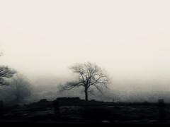 Since Yesterday (sjpowermac) Tags: sinceyesterday mallerstang 158910 2h86 reflection thoughts silvertone motion journey memories