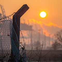 Sunrise behind the fence (astielau) Tags: booten dunst hafen hamburg morgen nebel portainer sonnenaufgang waltershoferhafen wetter
