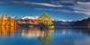 Blue and Gold (Dylan Toh) Tags: nisifilters aotearoa dawn dylantoh everlooklandscapephotography lakewanaka newzealand sunrise tree wanaka