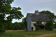 One Summer Morning (Majtek862) Tags: abandoned antique architecture atmosphere barn decay doorway entrance exterior farm farmstead grass gray green history kansas land landscape morning old overcast paint perspective prairie roof ruins rural scenic serene shelter summer trees vintage weathered wood