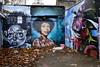 No Parking - Brick Lane - London - UK17 (FEGO Photographies) Tags: franckemanuelgoguer fego fegoguer fujifilm fuji fujifilmx100t x100t x100 streetart street parking london bricklane wall leaf graffiti