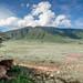 Ngorongoro's lion resting