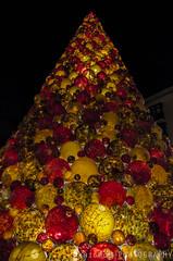 Xmas Tree (freshandfun) Tags: christmas christmastree tree mdina mdinaglass decoration valletta malta night glass handmade