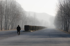 Lone Soldier, North Korea (Sniper Zaytsev) Tags: 조선민주주의인민공화국 평양시 military pyongyang sung junta fall trees empty koryo north korea dprk soldier dmz bicycle mist kim jong un il wilderness nikon d7000 autumn barren road street tree people lone
