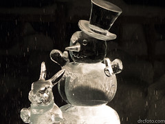 Snowman and rabbit (David R. Crowe) Tags: friends ice internations light people sculpture translucence calgary alberta canada