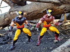 Take your pick (aka_patch) Tags: wolverine logan xmen habro marvellegends mutant