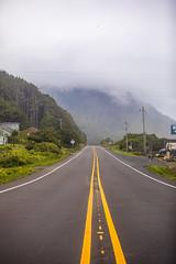 Find the Right Connection (Thomas Hawk) Tags: america oregon oregoncoast usa unitedstates unitedstatesofamerica road trees florence us fav10 fav25