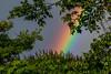 Rainbow (Wilmer Quiceno) Tags: rainbow arcoiris medellin lluvia naturaleza