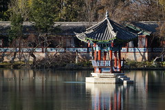 DSC01401 (lin_lap) Tags: yunnan china chinese travel 雲南 雲南省 中國 lijiang 麗江 麗江市
