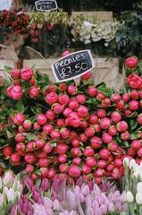 (Celeste Noche) Tags: london columbia flower market