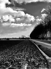 Time of day...... (rienschrier) Tags: farmer blackandwhite zwartwit landscape landschap iphone