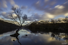 The Lone Tree (Carl Yeates) Tags: canon 550d thelonetree wales llynpadarn landscape water winter calm lee filter longexposure clouds sky scene mountains snowdon